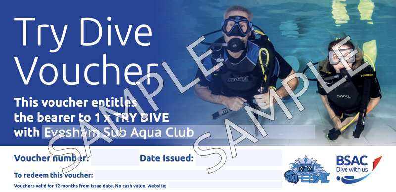 Try Dive voucher